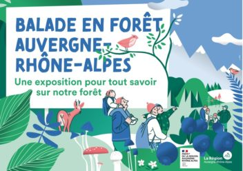 a travelling exhibition on forests