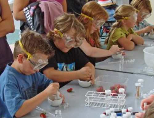 Science: presenting a workshop for kids